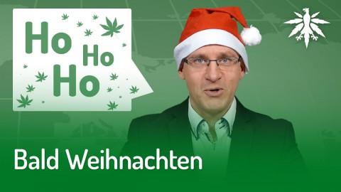 Bald Weihnachten | DHV-News #230