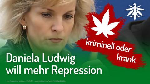 Daniela Ludwig will mehr Repression | DHV-Audio-News #234