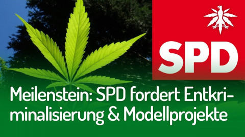 Meilenstein: SPD-Fraktion für Entkriminalisierung und Modellprojekte | DHV-Audio-News #237