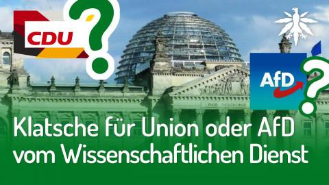 Klatsche für Union oder AfD vom Wissenschaftlichen Dienst | DHV-Audio-News #236