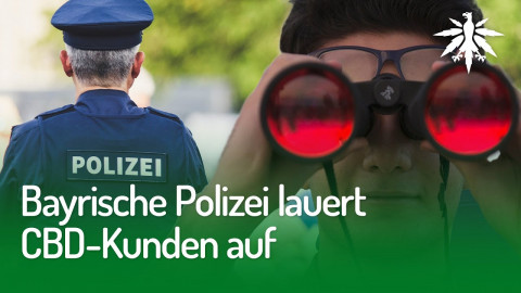 Bayrische Polizei lauert CBD-Kunden auf   DHV-Audio-News #239