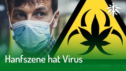 Hanfszene hat Virus | DHV-Audio-News #240