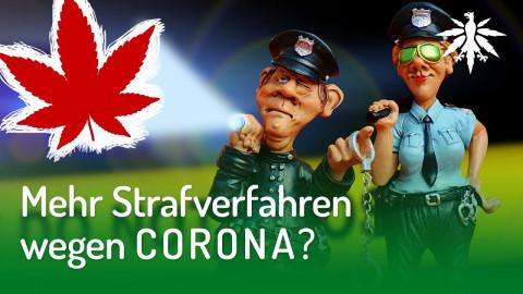 Mehr Strafverfahren wegen Corona? | DHV-Audio-News #245