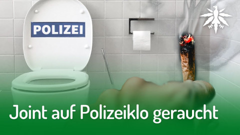 Joint auf Polizeiklo geraucht | DHV-Audio-News #244