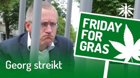 Georg streikt   DHV-Audio-News #247