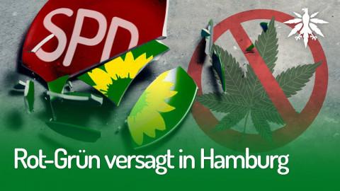 Rot-Grün versagt in Hamburg   DHV-Video-News #251