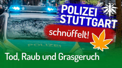 Tod, Raub und Grasgeruch | DHV-Audio-News #257