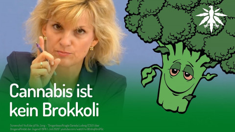 Cannabis ist kein Brokkoli | DHV-Audio-News #255