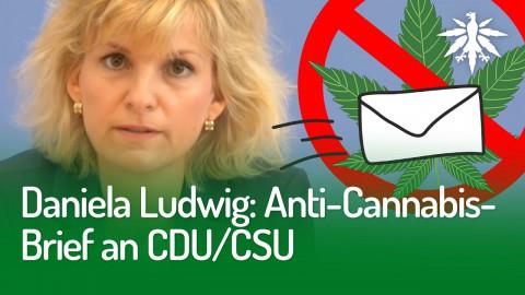 Daniela Ludwig: Anti-Cannabis-Brief an CDU/CSU | DHV-Audio-News #258