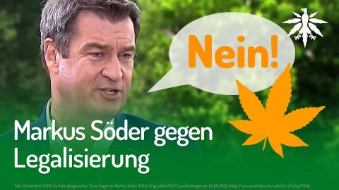 Markus Söder gegen Legalisierung | DHV-Audio-News #259