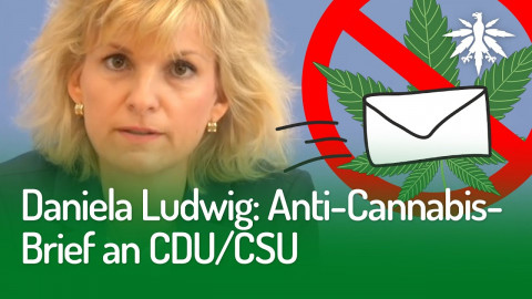 Daniela Ludwig: Anti-Cannabis-Brief an CDU/CSU | DHV-Audio-News #258