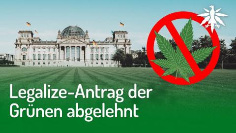 Legalize-Antrag der Grünen abgelehnt | DHV-Audio-News #263