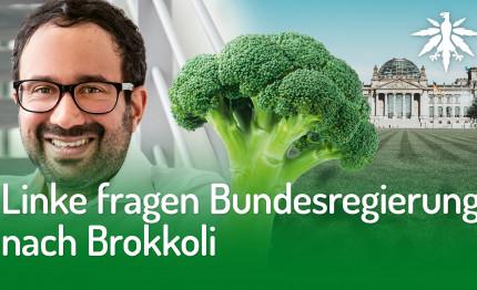 Linke fragen Bundesregierung nach Brokkoli | DHV-Audio-News #264