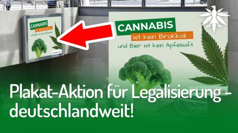 Plakat-Aktion für Legalisierung – deutschlandweit! | DHV-Audio-News #266