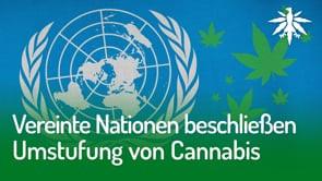Vereinte Nationen beschließen Umstufung von Cannabis | DHV-Audio-News #273
