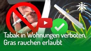 Tabak in Wohnungen verboten, Gras rauchen erlaubt | DHV-Audio-News #274