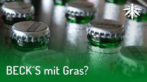BECK´S mit Gras? | DHV-Audio-News #189