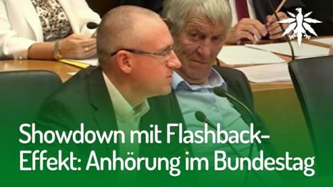 Showdown mit Flashback-Effekt: Anhörung im Bundestag | DHV-Audio-News #171