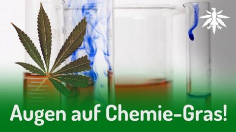 Augen auf Chemie-Gras! | DHV-Audio-News #277