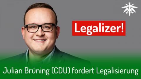 Julian Brüning (CDU) fordert Legalisierung | DHV-Audio-News #278