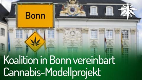 Koalition in Bonn vereinbart Cannabis-Modellprojekt | DHV-Audio-News #279