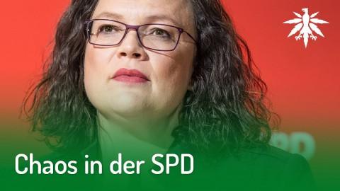 Chaos in der SPD | DHV-Audio-News #191