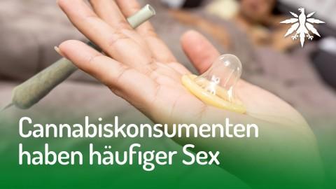 Cannabiskonsumenten haben häufiger Sex | DHV-Audio-News #143