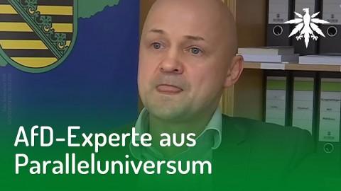 AfD-Experte aus Paralleluniversum | DHV-Audio-News #195