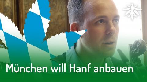 München will Hanf anbauen | DHV-Audio-News #205