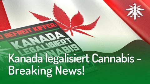 Kanada legalisiert Cannabis – Breaking News! | DHV-Audio-News #170