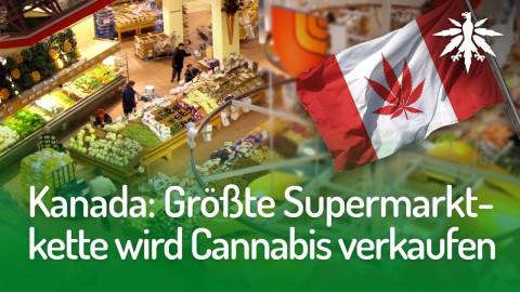 Kanada: Größte Supermarktkette wird Cannabis verkaufen | DHV-Audio-News #164