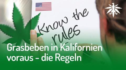 Grasbeben in Kalifornien voraus – die Regeln | DHV-Audio-News #146