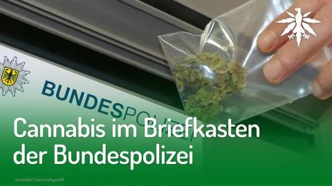 Cannabis im Briefkasten der Bundespolizei | DHV-Audio-News #209