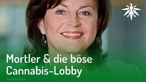 Mortler & die böse Cannabis-Lobby | DHV-Audio-News #199