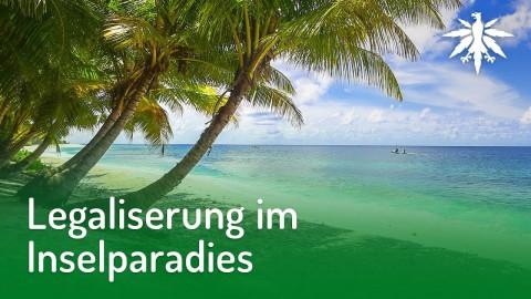 Legalisierung im Inselparadies | DHV-Audio-News #179