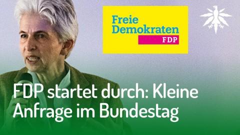FDP startet durch: Kleine Anfrage im Bundestag | DHV-Audio-News #149
