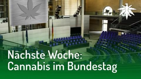 Nächste Woche: Cannabis im Bundestag | DHV-Audio-News #154