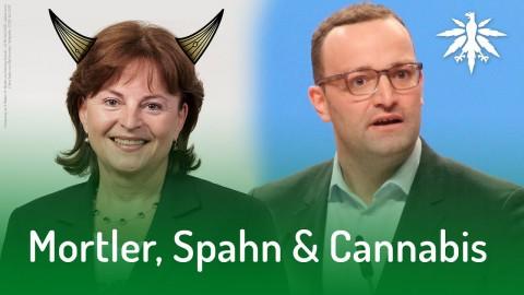 Mortler, Spahn & Cannabis | DHV-Audio-News #157