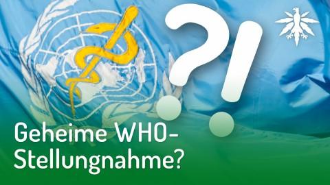 Geheime WHO-Stellungnahme? | DHV-Audio-News #188