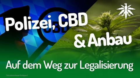 Auf dem Weg zur Legalisierung | DHV-Audio-News #203