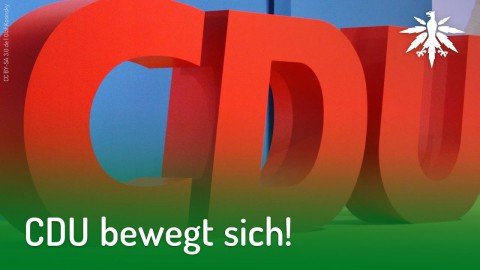 CDU bewegt sich | DHV-Audio-News #178
