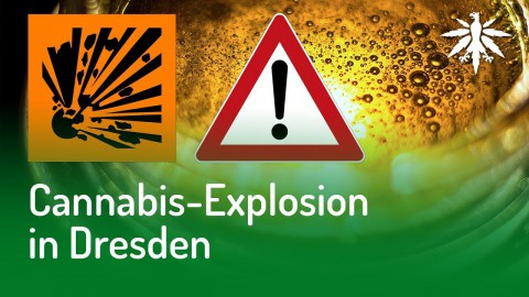 Cannabis-Explosion in Dresden | DHV-Audio-News #141