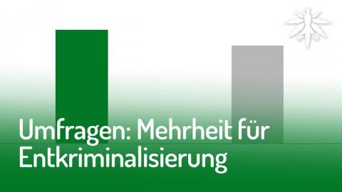 Umfragen: Mehrheit für Entkriminalisierung | DHV-Audio-News #145