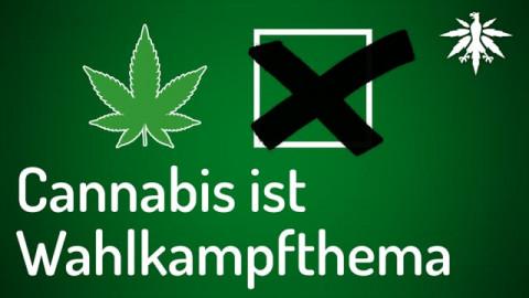 Cannabis ist Wahlkampfthema | DHV-Audio-News #281
