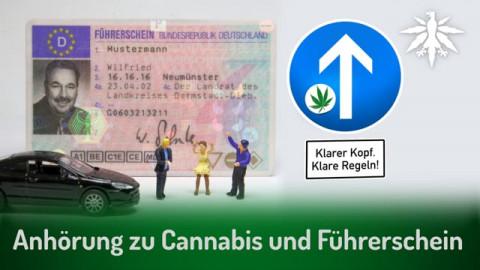 Anhörung zu Cannabis und Führerschein | DHV-Audio-News #283