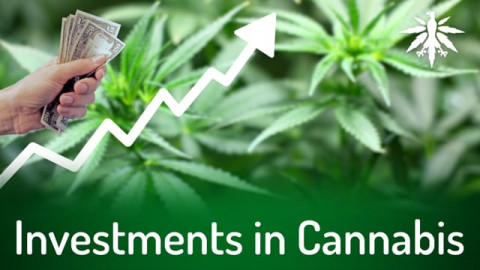 Investments in Cannabis | DHV-Audio-News #286