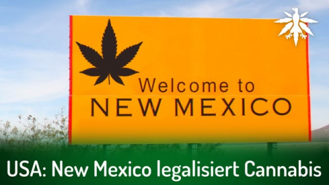 USA: New Mexico legalisiert Cannabis | DHV-Audio-News #288