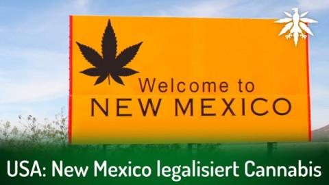 USA: New Mexico legalisiert Cannabis | DHV-Audio-News #288