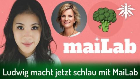 Ludwig macht jetzt schlau mit MaiLab | DHV-Audio-News #292