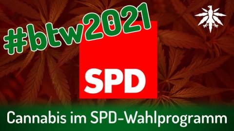 Cannabis im SPD-Wahlprogramm | DHV-Audio-News #293
